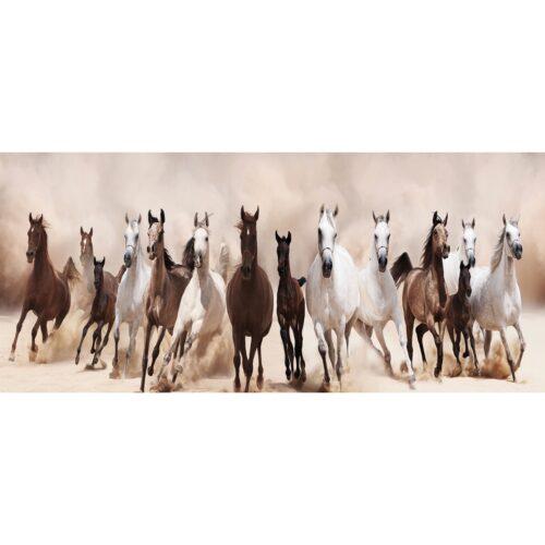 Foto op glas 'Paarden'