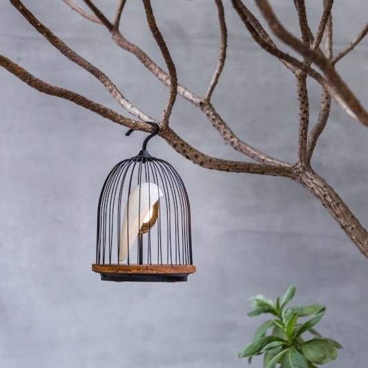 Daqi Concept - Jingoo -Design vogelkooi met bluetooth en licht