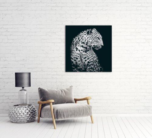 Foto op glas 'Leopard in the dark'