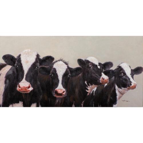 Schilderij 'Curious Cows'