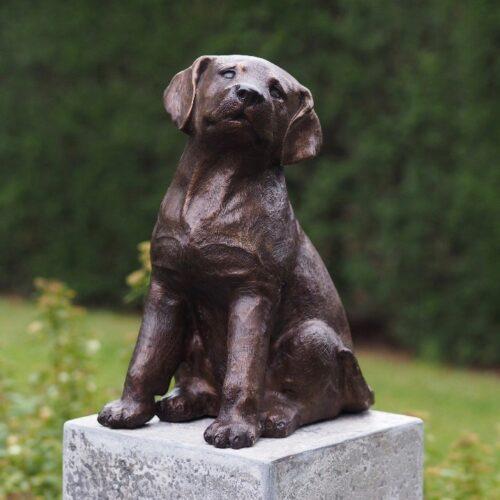 Bronzartes bronzen beeld 'Puppy'