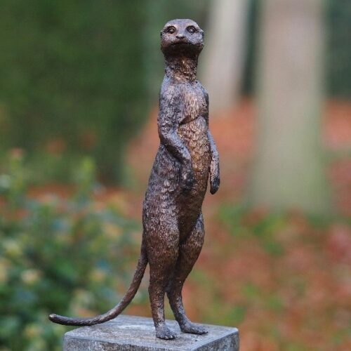 Bronzartes bronzen beeld 'Stokstaart Staand'