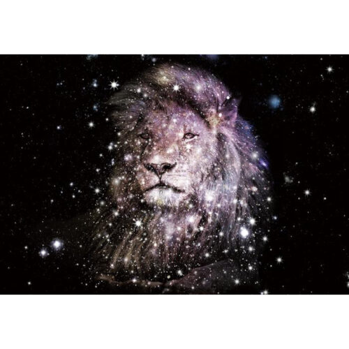 Foto op glas 'Sparkling Lion'