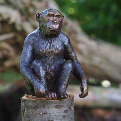 Bronzartes bronzen beeld 'Chimpansee'