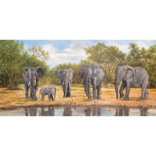 Ad Machielsen schilderij 'Olifanten'